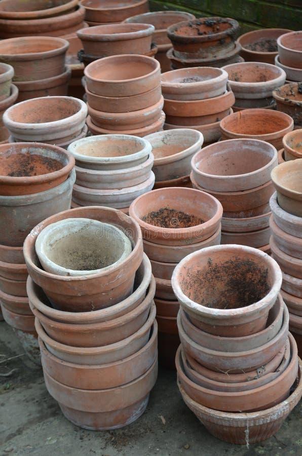 Trädgårds- terrakottaväxtkrukor arkivbild