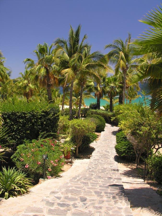 Download Trädgårds- tropiskt arkivfoto. Bild av avkoppling, hotell - 233852