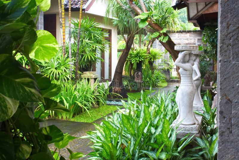 trädgårds- tropiskt royaltyfria foton