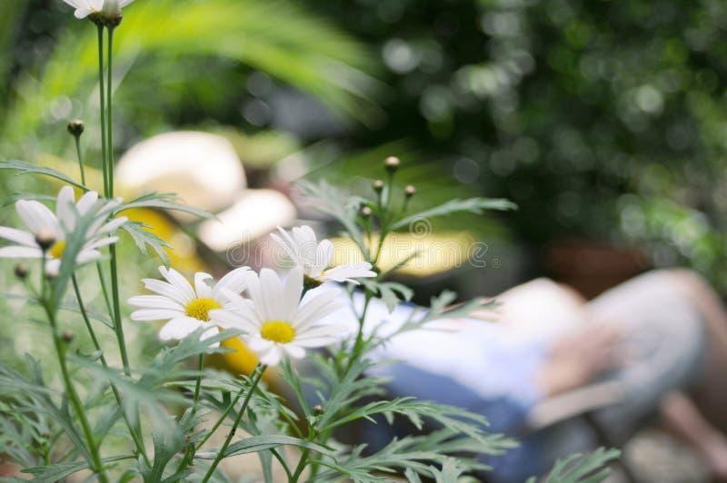 trädgårds- vila för man arkivbilder