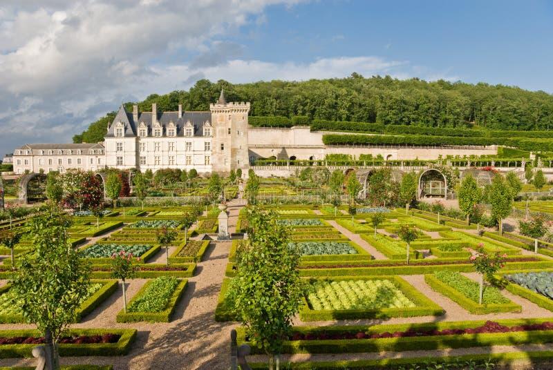 trädgårds- villandry för chateau arkivbild