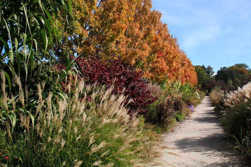Trädgårds- Walkway royaltyfri foto