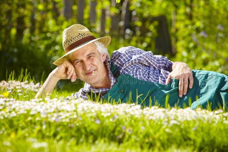 Trädgårdsmästareängen blommar mannen royaltyfri bild