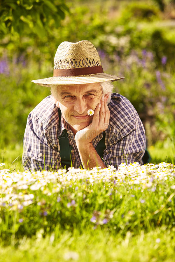 Trädgårdsmästareängstående arkivfoto