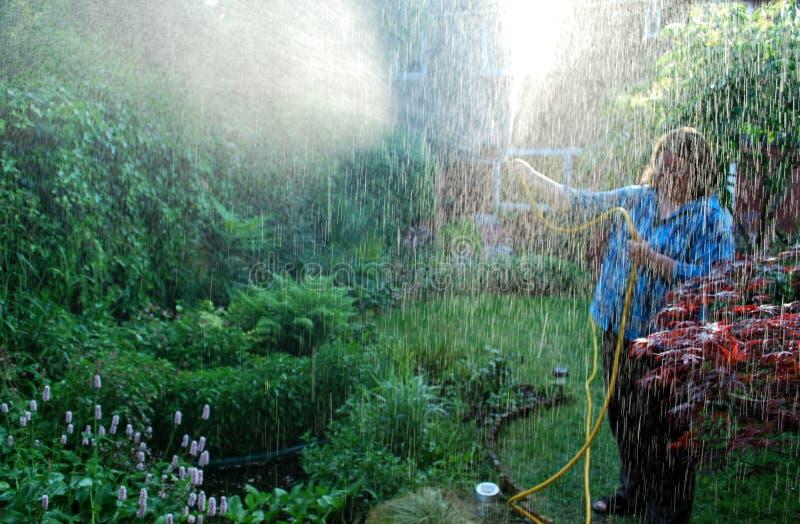 trädgårdsmästare royaltyfri fotografi