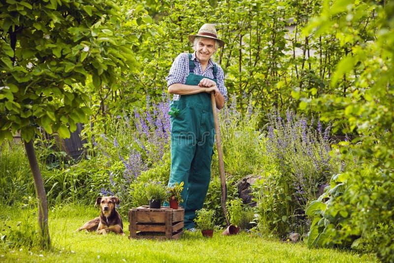 Trädgårdsmästare Garden Standing Laughing fotografering för bildbyråer