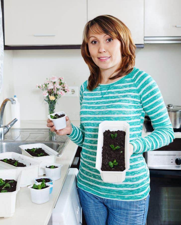 Trädgårdsmästare i grönt arbete med plantor royaltyfria bilder