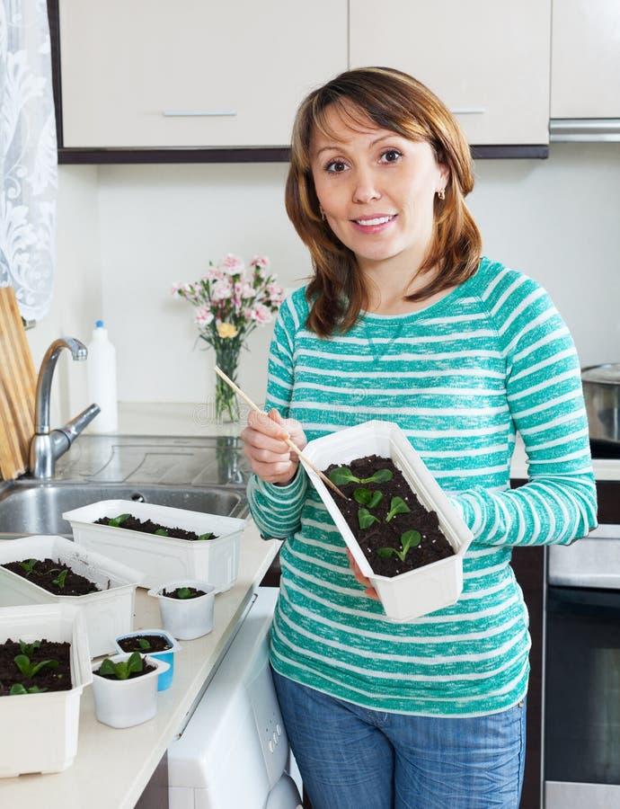 Trädgårdsmästare i grönt arbete med plantor arkivbild
