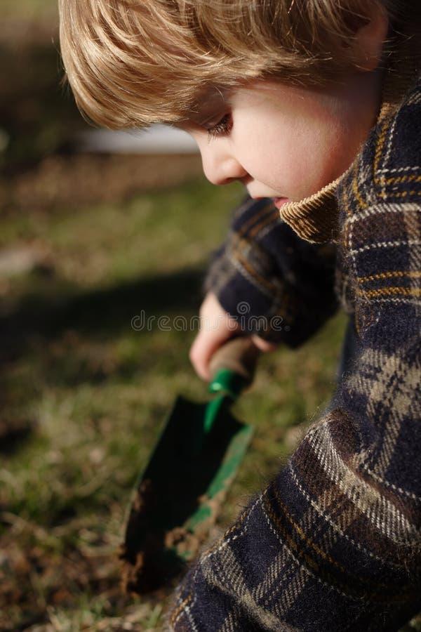 trädgårdsmästare little arkivfoton