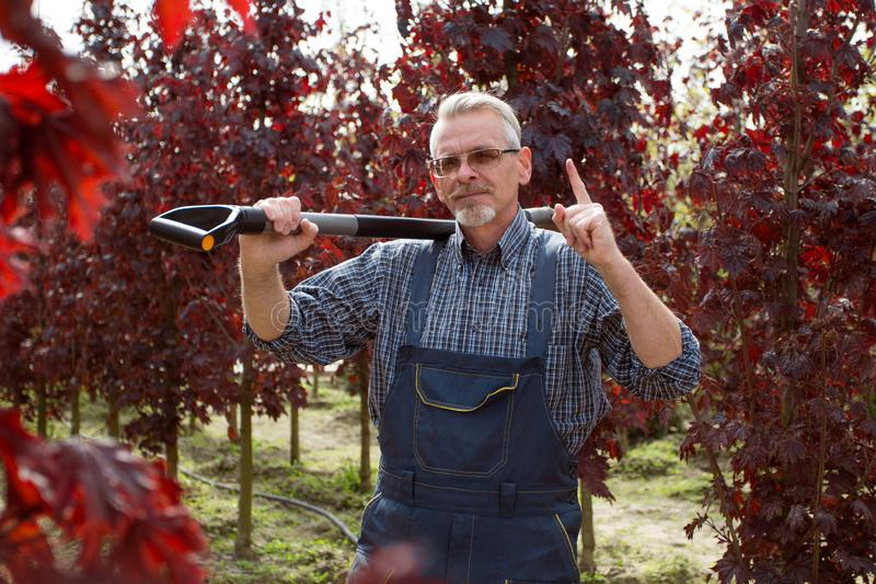 Trädgårdsmästare med en spade i trädgården på en bakgrund av träd royaltyfri bild