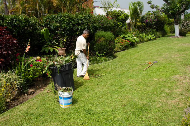 Trädgårdsmästare på arbete royaltyfria bilder