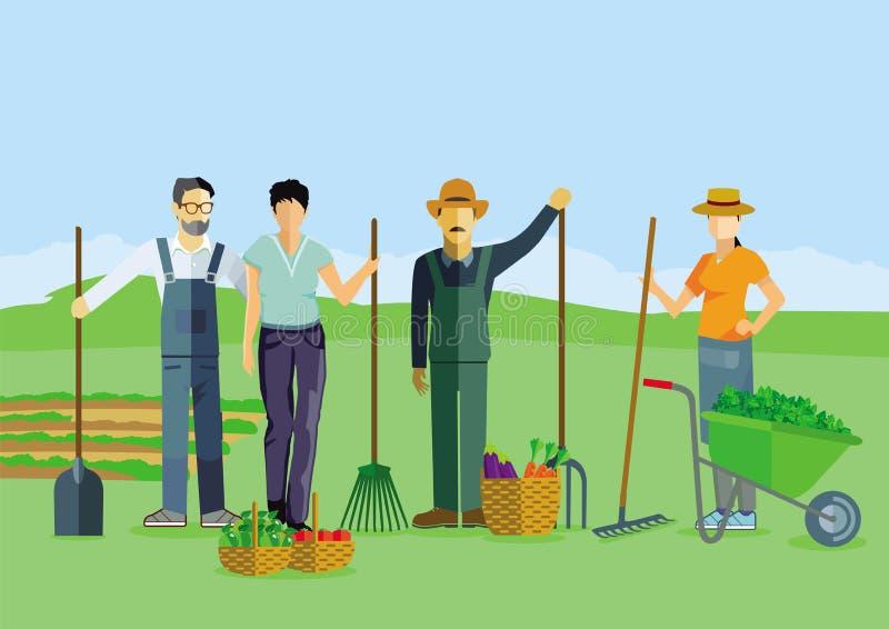 Trädgårdsmästare skördar på fältet vektor illustrationer