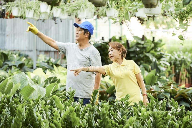 Trädgårdsmästare som diskuterar arbete royaltyfri bild