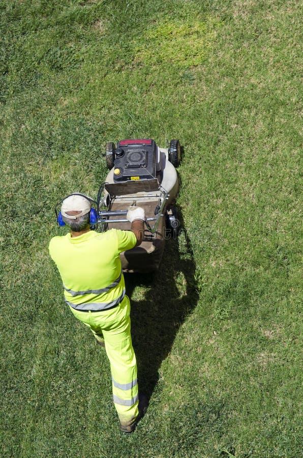 Trädgårdsmästare som klipper gräset arkivbilder