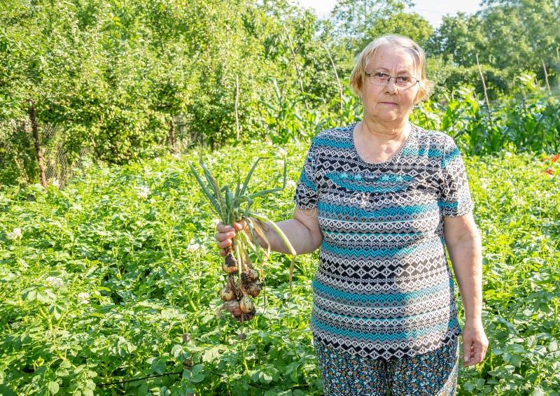 Trädgårdsmästarekvinnaanseende med en grupp av salladslökar royaltyfria bilder