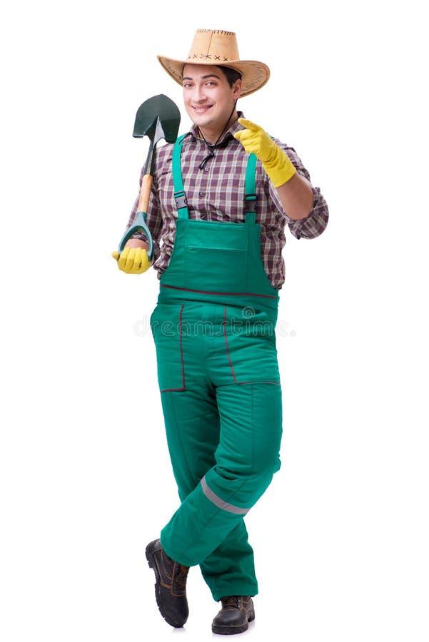 Trädgårdsmästaren för ung man som isoleras på vit arkivfoto
