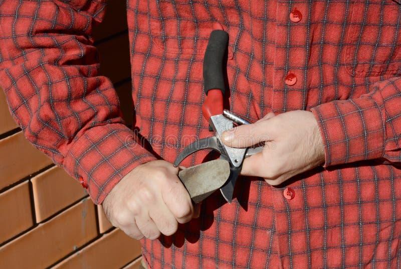 Trädgårdsmästaren Hands Sharpen Pruning klipper Trädgårdsmästare Cleaning och Sha arkivbilder