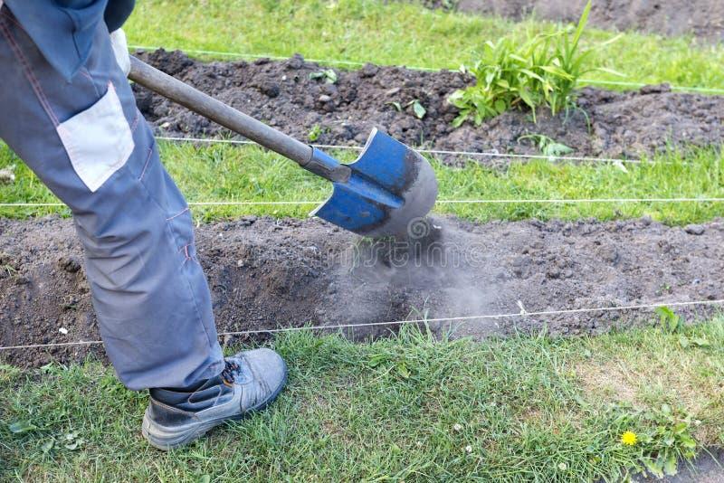 Trädgårdsmästaren med skyffeln behandlar rabatt i trädgården? trädgårdsmästare royaltyfria bilder