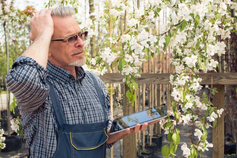 Trädgårdsmästaren tog hans huvud och blickar på växten arkivbild