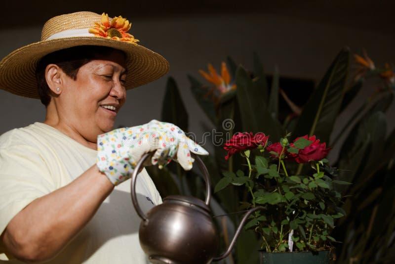 trädgårdsmästarepensionär arkivbilder