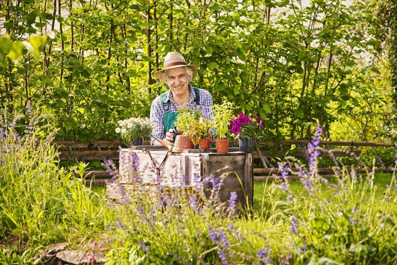 TrädgårdsmästarePlants Garden Straw hatt royaltyfri fotografi