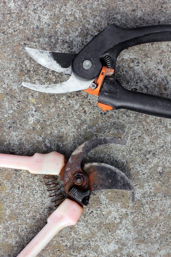 Trädgårdsmästares pruner Två pruners som ligger på betong fotografering för bildbyråer