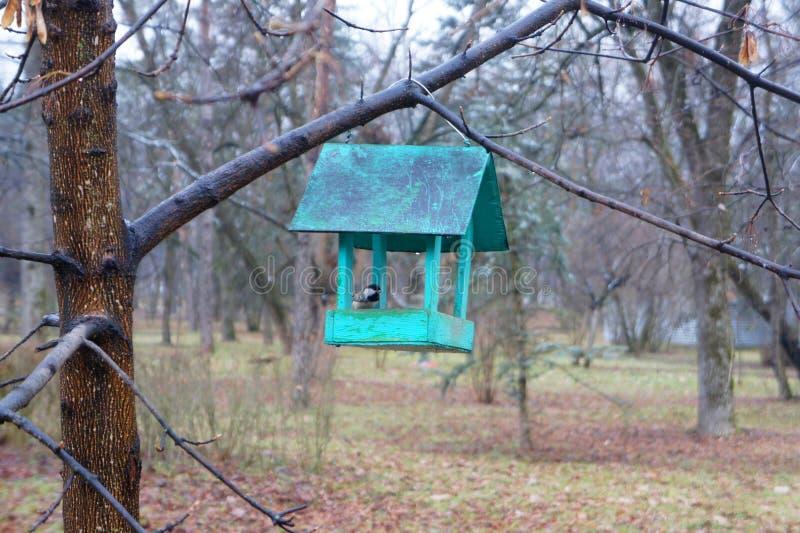 trädhus för fåglarna, gladlynta apartmen arkivbilder