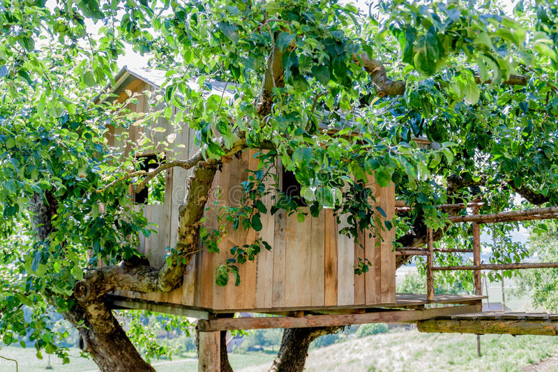 Trädhus - stuga - lantgård royaltyfri bild