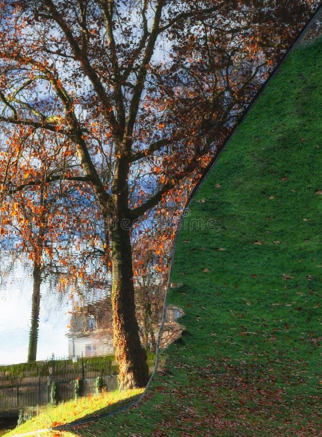 Trädreflexion i vattnet med grönt gräs i höst i staden av Nantes - Frankrike royaltyfri fotografi