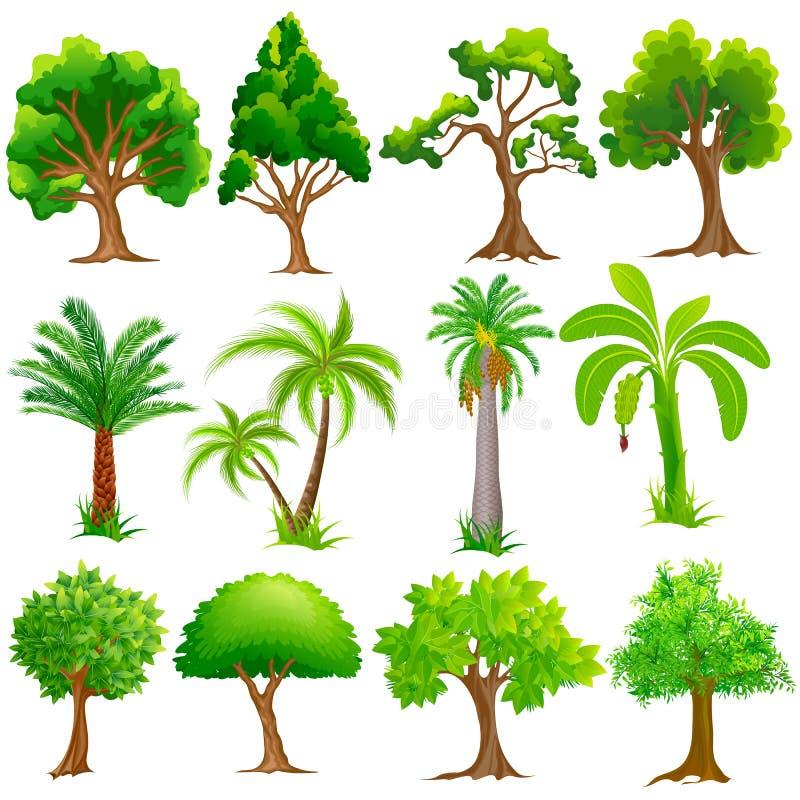 Trädsamling vektor illustrationer
