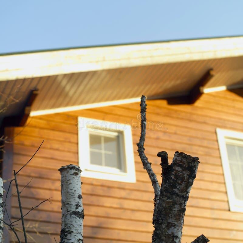 Trädstubbar mot huset arkivfoton