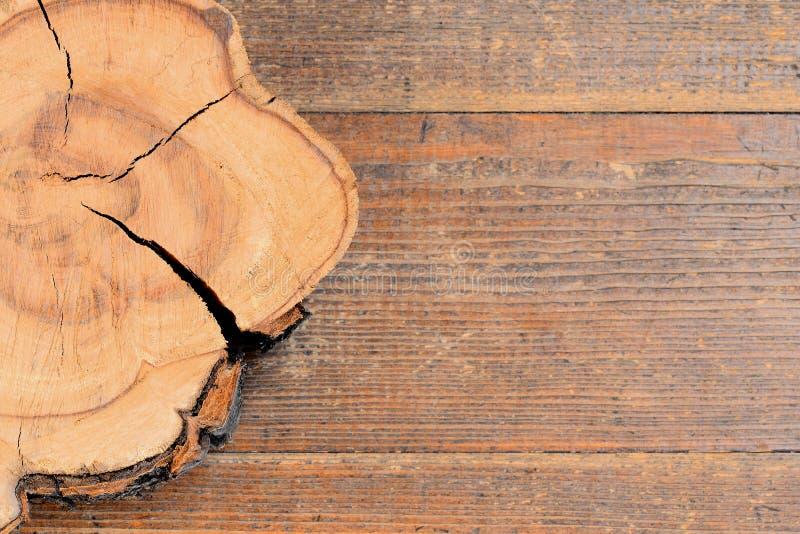 Trädstubbe på en träbakgrund med kopieringsutrymme för text Trä texturera bakgrund för upplösningsavsnitt för asp- kors hög tree  arkivbild