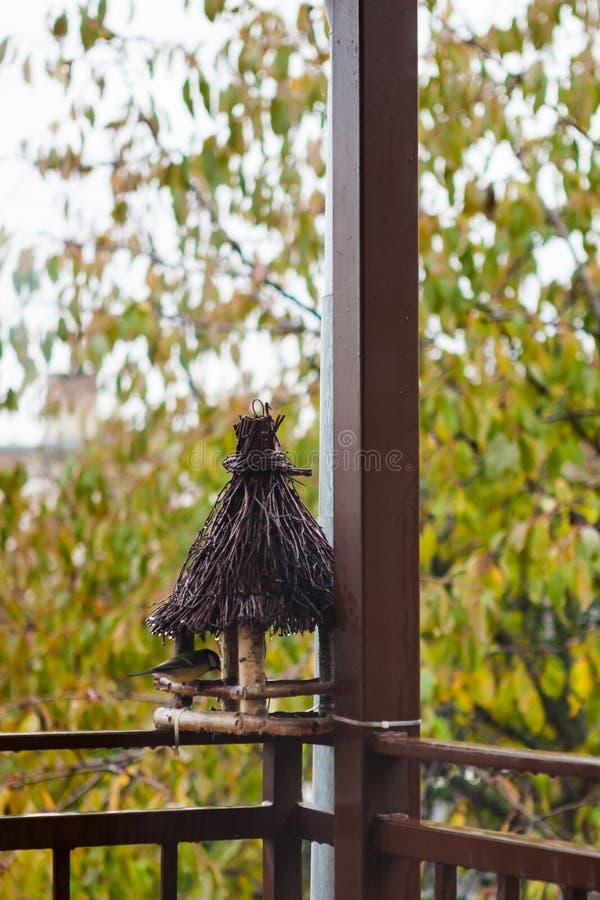 Träfågelförlagematare på husterrassen royaltyfri foto