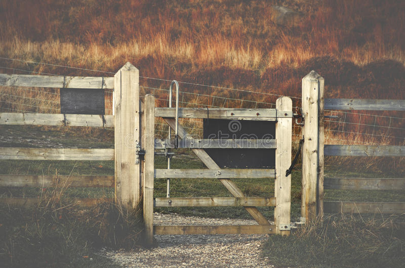 Träför Dovestone för portmaximumområde Greenfield behållare, Englan royaltyfri fotografi