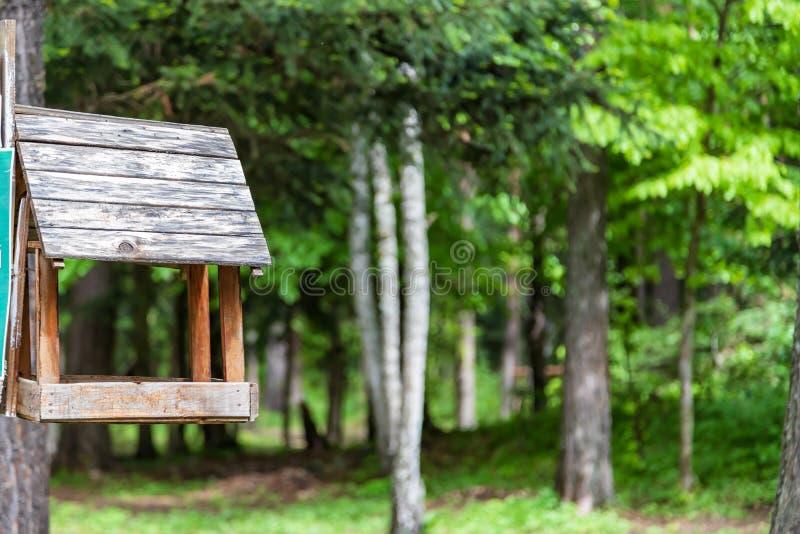 Träförlagematare för små fåglar som fästas till ett träd arkivfoto