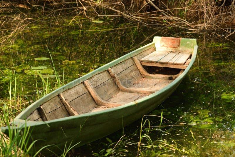 Träfartyg på den Hutovo Blato naturreserven arkivbild