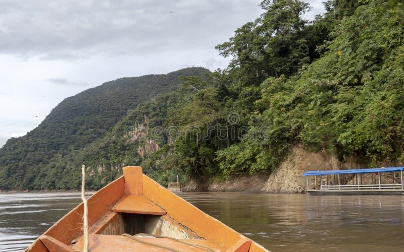 Träfartygframdel och grönt djungellandskap som seglar i det leriga vattnet av den Beni floden, Amazonian rainforest, Bolivia royaltyfri bild
