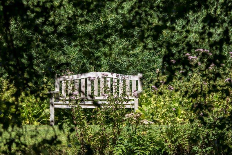 träffas hemligheten Avskild tom bänkplats i en landsträdgård royaltyfria bilder