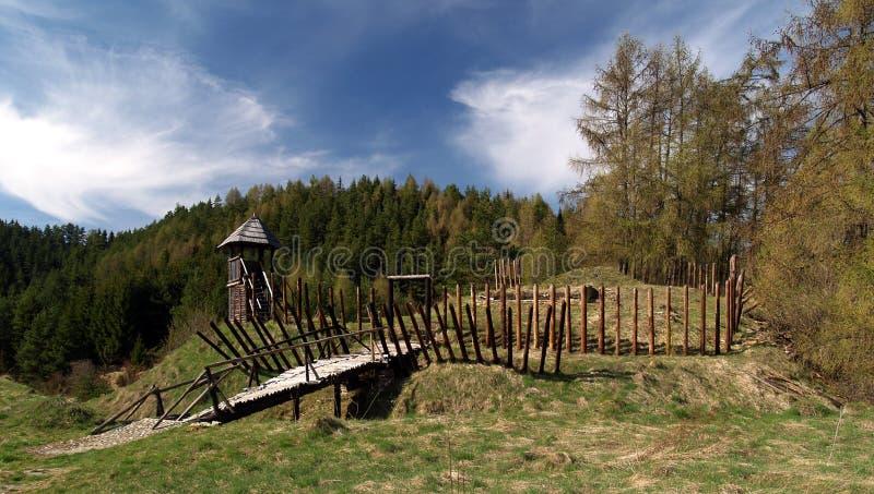 träforntida fort royaltyfri bild