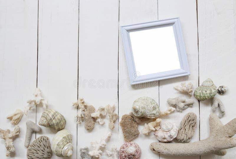 Träfotoram på ett vitt trägolv och att ha skal och korallrever arkivfoton