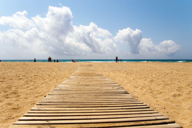 Trägångbana på den sandiga stranden royaltyfri fotografi