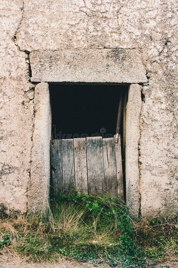 Trägammal dörr på en stenvägg royaltyfria bilder