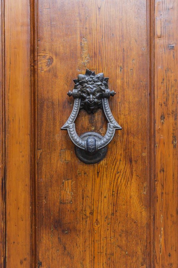 trägammal textur för dörr royaltyfri foto