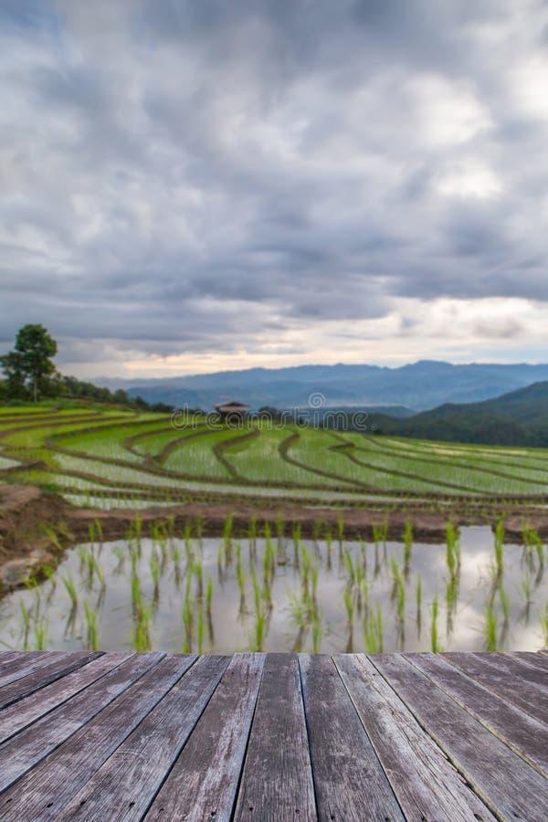 trägolv och Blured åkerbruka terrassrisfält på Met royaltyfri fotografi