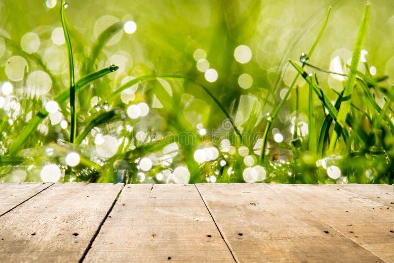 Trägolv och bokehbakgrund av grässidor med daggpinnar royaltyfri foto