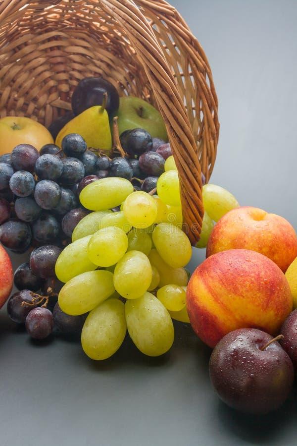 Trägt Anordnung Früchte stockbild