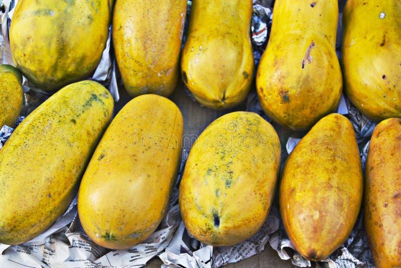Trägt Papaya Früchte lizenzfreie stockfotografie