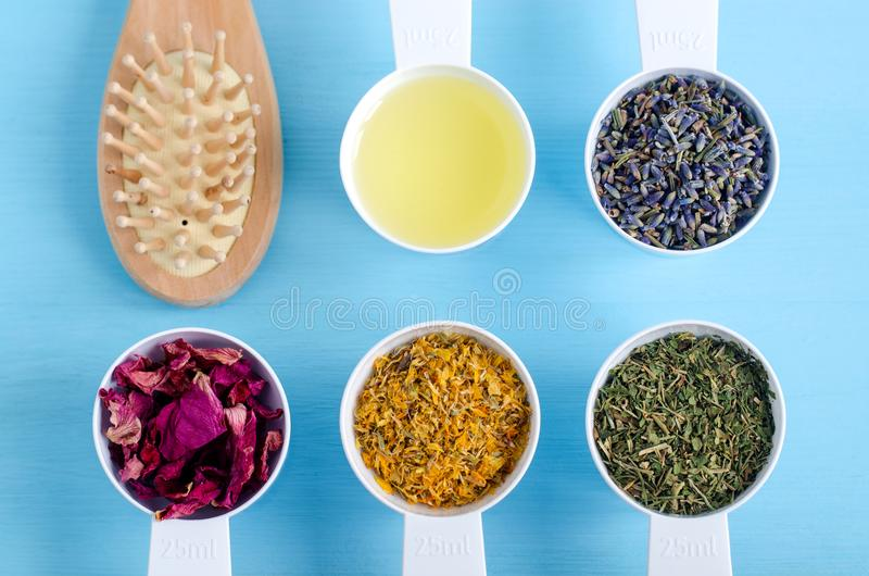 Trähårborste- och plast-skopor med olivolja, den torra ringblomman, lavendel, persilja och hunden steg blommor Aromatherapy växt- royaltyfri foto
