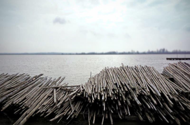 Trähögar på sjön royaltyfri bild