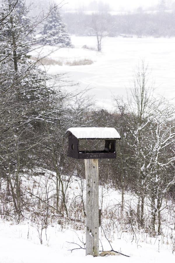 Trähandgjort fågelhus i ett vertikalt vinterlandskap, snö, arkivbild